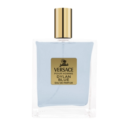 Versace Pour Homme Dylan Blue Special EDP for Men-ورساچه پورهوم دیلن بلو ادوپرفیوم مردانه ویژه عطرسرا