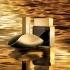 thumb-Euphoria Liquid Gold for Men-ایفوریا لیکویید گلد مردانه
